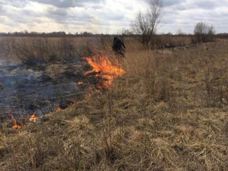Підпал сухої трави біля Любомля