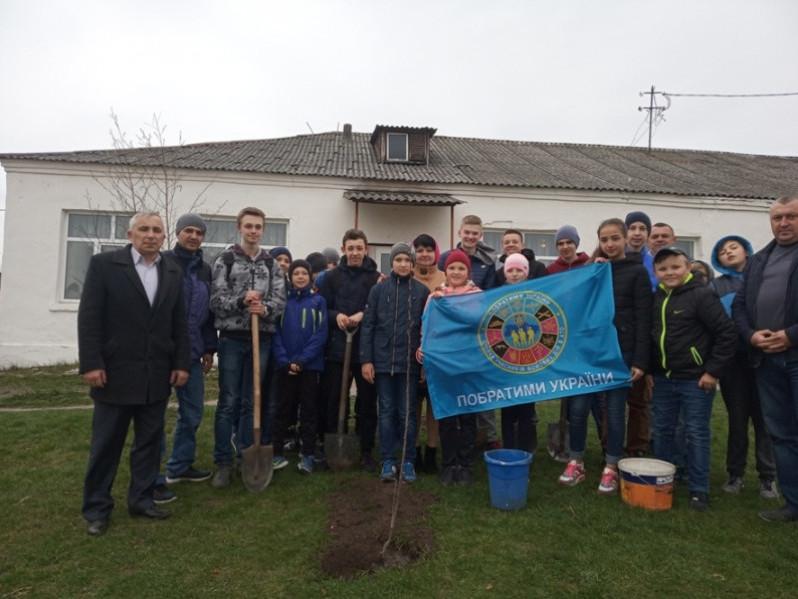 Любомль: учні на території школи висадили «дерева миру»