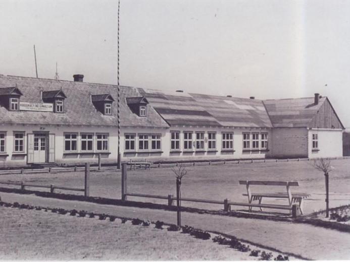 Польська гімназія у Любомлі