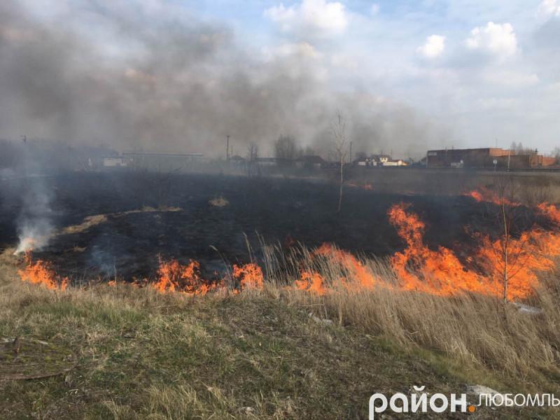 Пожежа біля Любомля