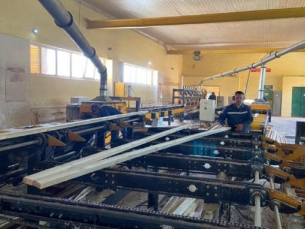 Виробництво пиломатеріалів на власній базі