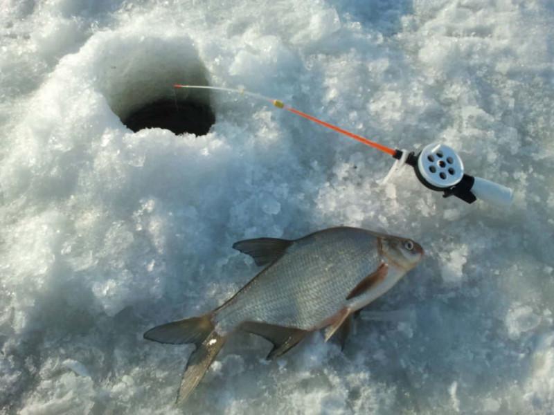 Зимова риболовля