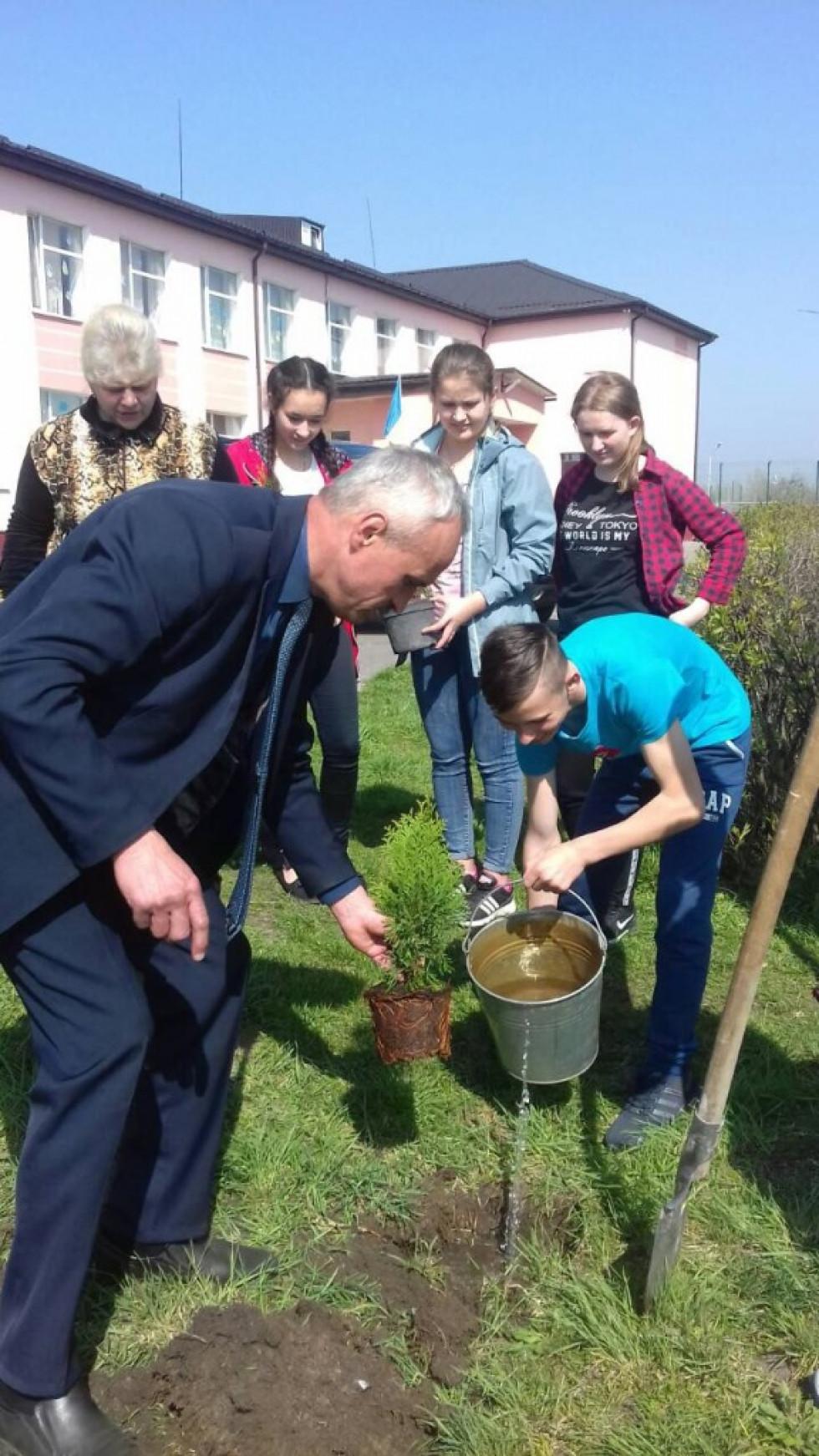 Біля Вишнівського НВК учні з директором школи та гостями висаджували туї.
