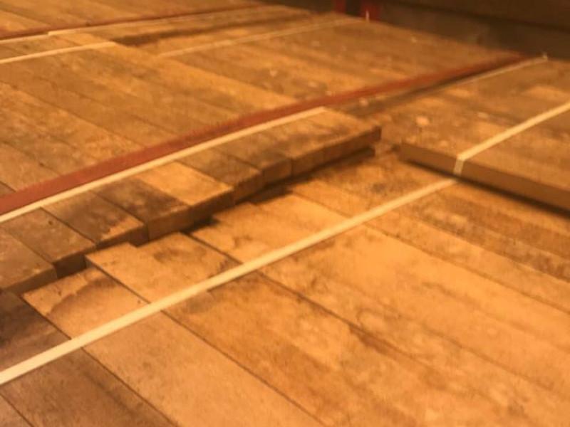 На Ягодині запобігли незаконному експорту черешчатого дуба