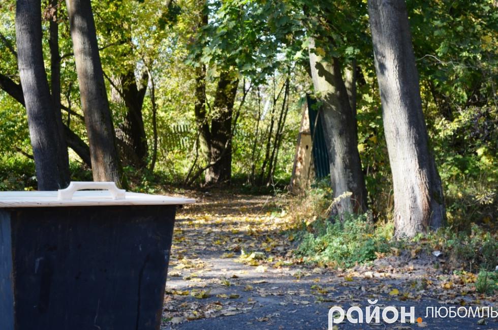 Лісівники сподіваються на підтримку чистоти, порядку, культури