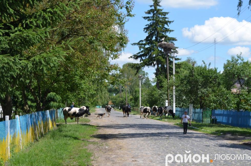 Кам'янки-дороги служать людям у деяких селах та і в Любомлі ще з 60-70 років.